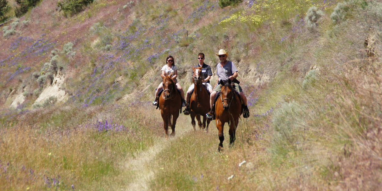 Kelowna area horseback riding at its best